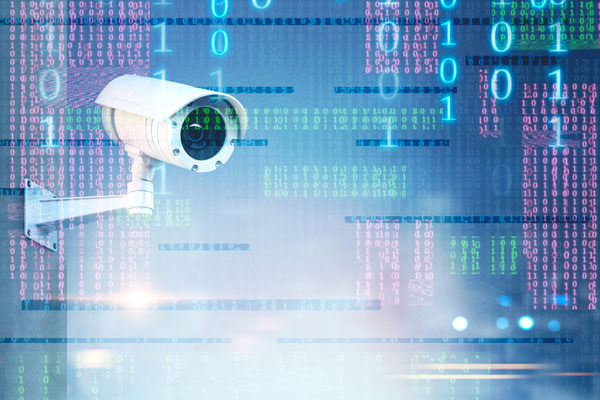 IP Camera with Anti-intrusion Software